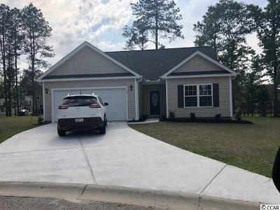 Loris Single Family Home Active-Pend. Cntgt. On Financi: 176 Winding Path Dr