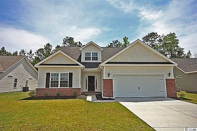 Loris Single Family Home Active-Pend. Cntgt. On Financi: 179 Winding Path Dr