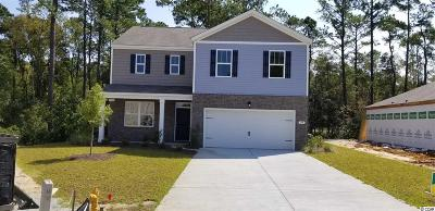 Pawleys Island Single Family Home For Sale: 159 Parkglen Drive