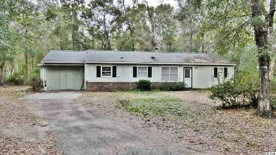 Pawleys Island Single Family Home For Sale: 47 Rosetta Ln