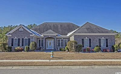Myrtle Beach Single Family Home For Sale: 3091 Bayhaven Drive