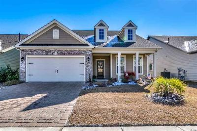 Myrtle Beach Single Family Home For Sale: 1802 Bluff Drive