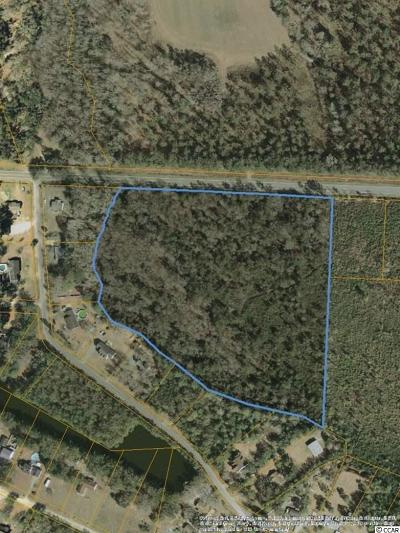 Georgetown County, Horry County Residential Lots & Land For Sale: NE Highway 90