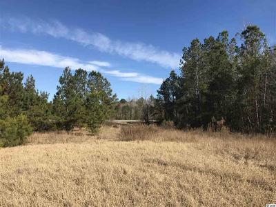 Horry County Residential Lots & Land For Sale: Tbd Bay Water Drive