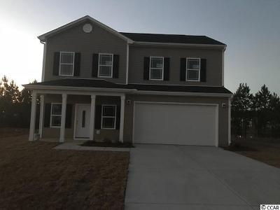 Surfside Beach Single Family Home For Sale: 2101 Deerfield Avenue