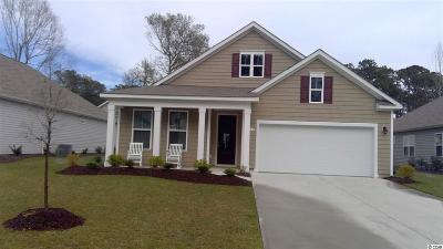 North Myrtle Beach Single Family Home For Sale: 1119 Inlet View Drive