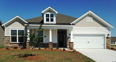 Myrtle Beach Single Family Home For Sale: 145 Copper Leaf Dr