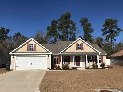 Horry County Single Family Home For Sale: 389 Millbrook Circle
