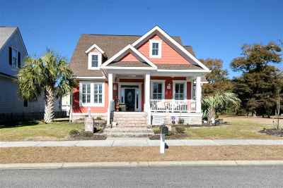 North Myrtle Beach Single Family Home For Sale: 3611 Seabrook Avenue
