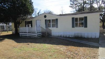Georgetown Single Family Home For Sale: 152 Driftwood Ave.