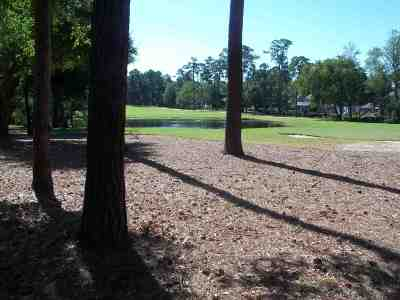 North Myrtle Beach SC Residential Lots & Land Sold: $78,000