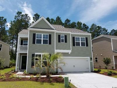 Myrtle Beach Single Family Home For Sale: 2874 Scarecrow Way