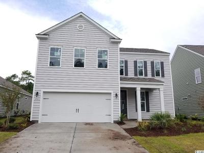 Myrtle Beach Single Family Home For Sale: 2849 Scarecrow Way