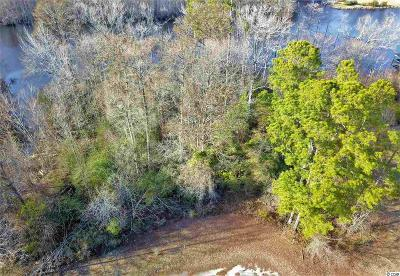 Georgetown County, Horry County Residential Lots & Land For Sale: Lot 6 Todd Est