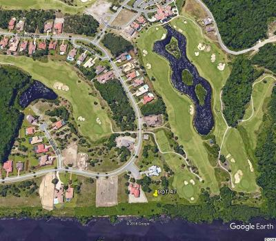 Georgetown County, Horry County Residential Lots & Land For Sale: 9485 Ronda Court
