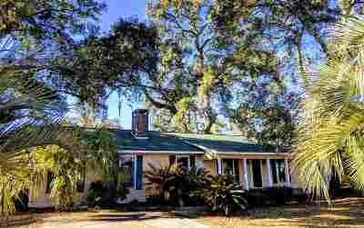 Georgetown Single Family Home For Sale: 405 Sassanqua Drive