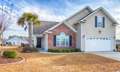 Surfside Beach Single Family Home For Sale: 1251 Wayvland Dr