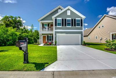 Myrtle Beach Single Family Home For Sale: 3681 White Wing Circle