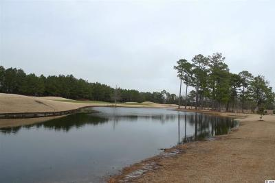 Georgetown County, Horry County Residential Lots & Land For Sale: 8985 Bella Verde Ct.