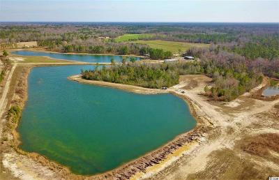 Georgetown County, Horry County Residential Lots & Land For Sale: 1215 Hewitt Rd.