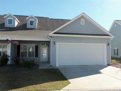 Georgetown County, Horry County Condo/Townhouse For Sale: 1005 Red Sky Lane #102