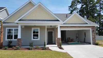 North Myrtle Beach Single Family Home For Sale: 1132 Doubloon Drive