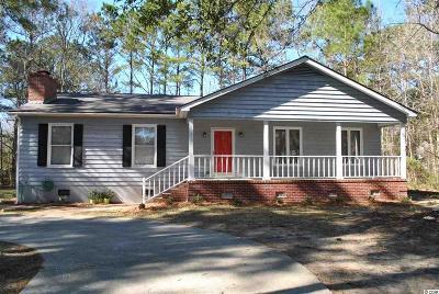 Pawleys Island Single Family Home For Sale: 197 Raintree Lane