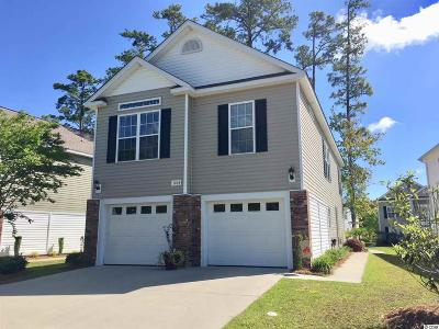 Horry County Single Family Home For Sale: 1404 Powhaton Drive