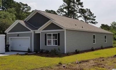 Pawleys Island Single Family Home For Sale: 102 Parkside Drive