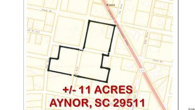 Aynor SC Residential Lots & Land For Sale: $180,000