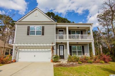 Pawleys Island Single Family Home For Sale: 179 Parish Road
