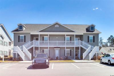 Georgetown County, Horry County Condo/Townhouse For Sale: 249 Moonglow Circle #102