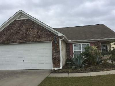 Garden City Beach, Litchfield, Murrells Inlet, Pawleys Island, Atlantic Beach, Aynor, Cherry Grove, Conway, Grean Sea, Green Sea, Little River, Longs, Loris, Myrtle Beach, North Myrtle Beach, Surfside Beach Single Family Home For Sale: 175 Tibton