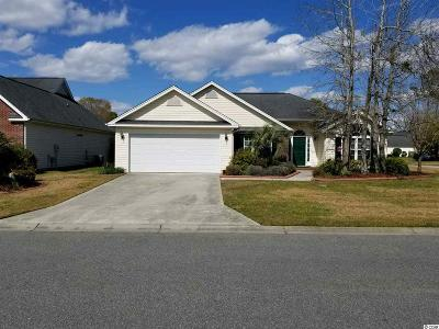 Horry County Single Family Home For Sale: 152 Tibton Circle