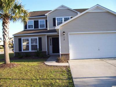 Myrtle Beach Single Family Home For Sale: 151 Weeping Willow Drive