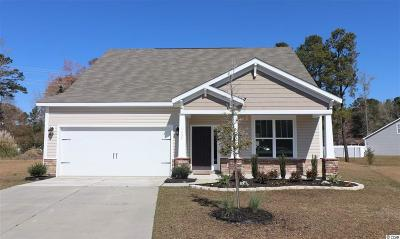 Myrtle Beach Single Family Home For Sale: 1137 Bethpage Road