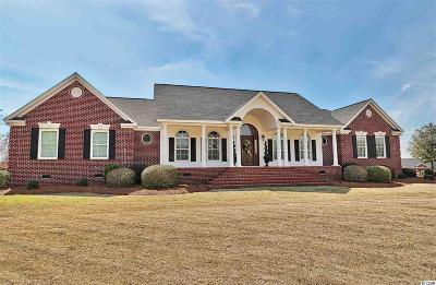 Aynor, Galivants Ferry Single Family Home For Sale: 974 Tolar Rd.