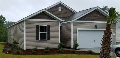 Pawleys Island Single Family Home For Sale: 25 Parkside Drive