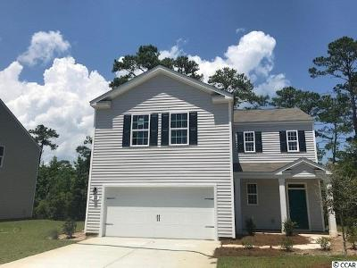 Pawleys Island Single Family Home For Sale: 141 Parkglen Drive