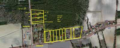 Galivants Ferry SC Residential Lots & Land For Sale: $30,000