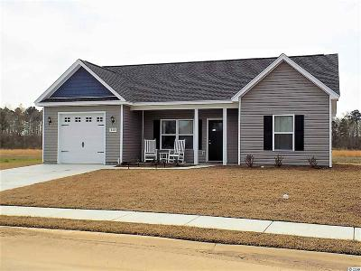 Conway Single Family Home Active-Pend. Cntgt. On Financi: 168 Springtide Dr