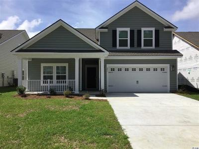 Myrtle Beach Single Family Home Active-Pend. Cntgt. On Financi: 253 Harbinson Circle