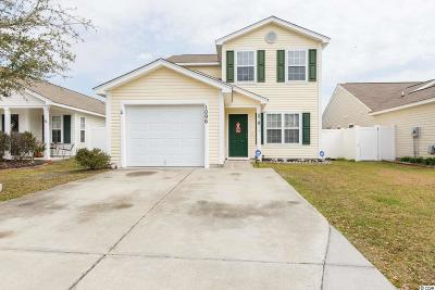 Myrtle Beach Single Family Home For Sale: 1096 Stoney Falls Blvd