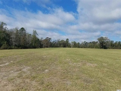 Conway SC Residential Lots & Land For Sale: $695,000