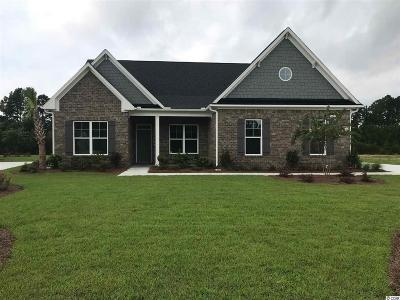 Conway Single Family Home For Sale: 2216 Wood Stork Drive