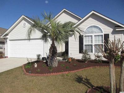 Myrtle Beach Single Family Home For Sale: 1061 Great Lakes Circle