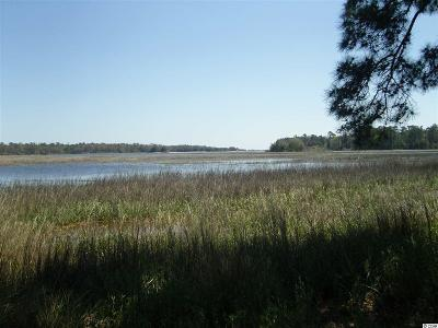 Georgetown County, Horry County Residential Lots & Land For Sale: 2350 Island Way