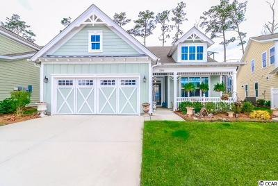 Horry County Single Family Home For Sale: 2203 Birchwood Circle