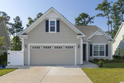 Horry County Single Family Home For Sale: 2191 Birchwood Circle