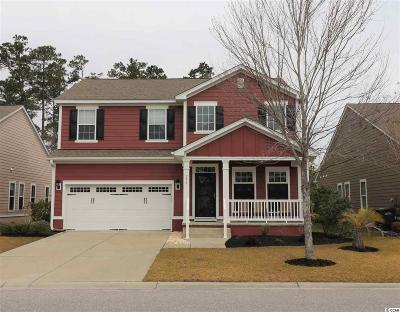 Murrells Inlet Single Family Home For Sale: 294 Simplicity Drive